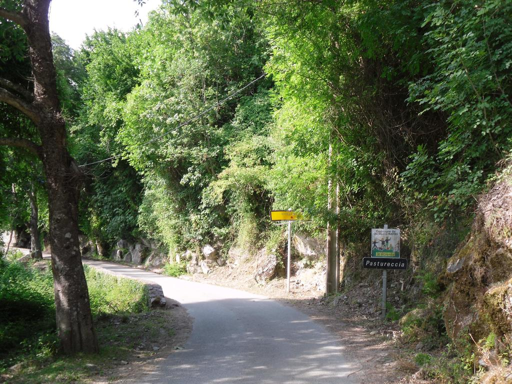 The road to Pastoreccia
