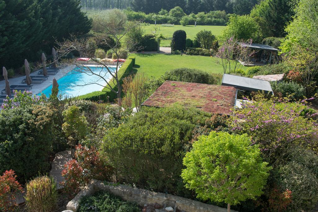 Garden, lawn, swimming pool
