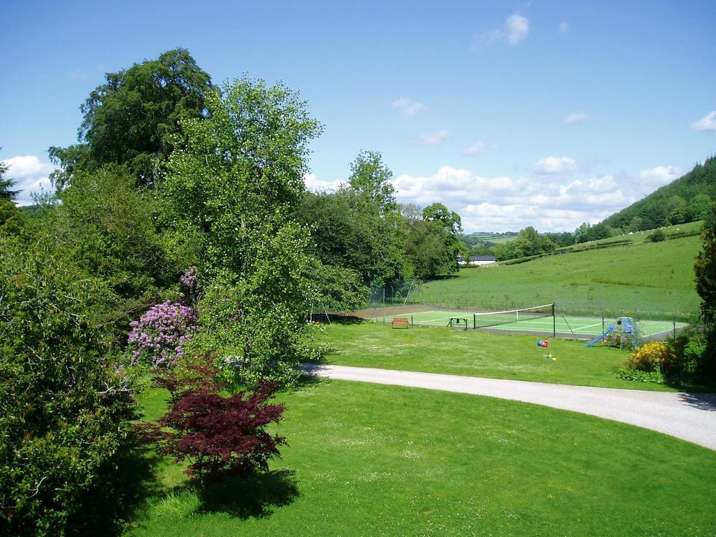 Country B&B, mid Wales