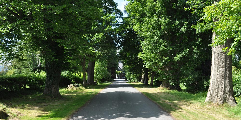 entrance drive, Maesmawr Hall